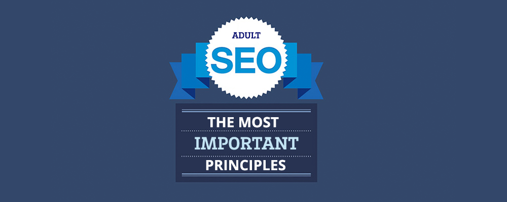 SEO Adult Principles Explained